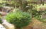 415 NW 19th St, Newport, OR 97365 - Landscaping