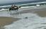 6440 SW Arbor Dr, Newport, OR 97366 - Horses on the Beach