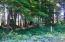 520 Ocean View Ln, Lincoln City, OR 97367 - lot 520 trees