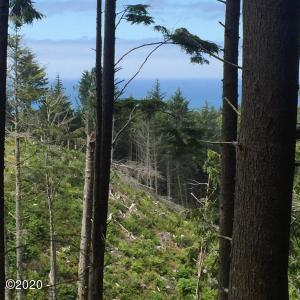 520 Ocean View Ln, Lincoln City, OR 97367 - Nettle lot Salishan hills