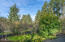 46415 Terrace Dr., Neskowin, OR 97149 - Front yard