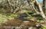 T/L 1201 Slab Creek Rd, Neskowin, OR 97149 - 20201017_123545