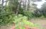 5555 NE Goodwin Ave, Yachats, OR 97498 - View from Deck
