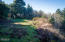 867 Horizon Hill Road, Yachats, OR 97498 - grade at house site