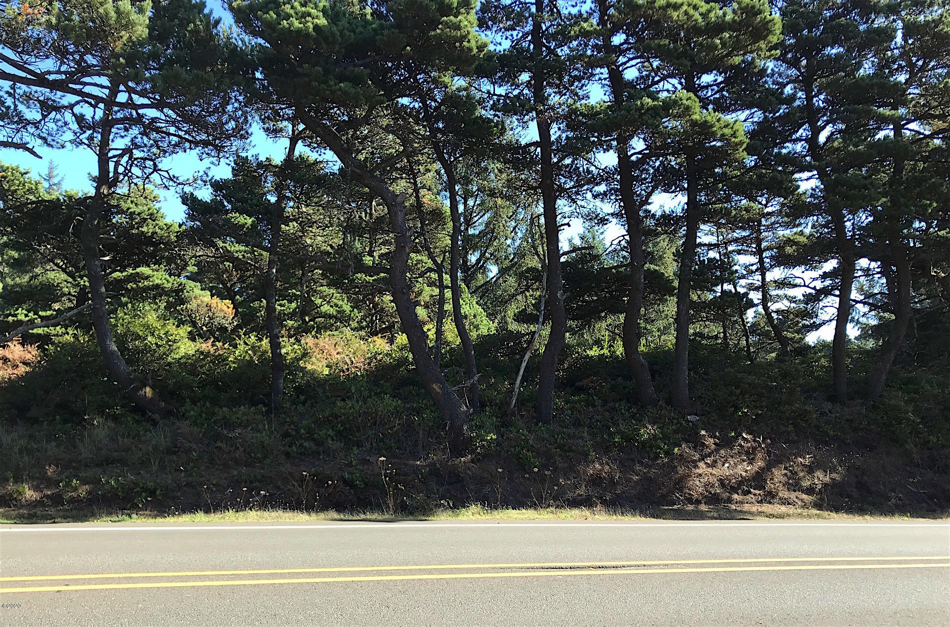 5863 NW Pacific Coast Hwy., Seal Rock, OR 97376 - View of lot from PCH