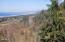 4780 Valley View Dr, Neskowin, OR 97149 - Great View!