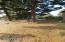 1802 NW Cedar Crest Pl, Waldport, OR 97394 - South Edge 2