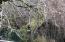 750 SW Siletz River Dr, Siletz, OR 97380 - 750 SW Siletz River Dr