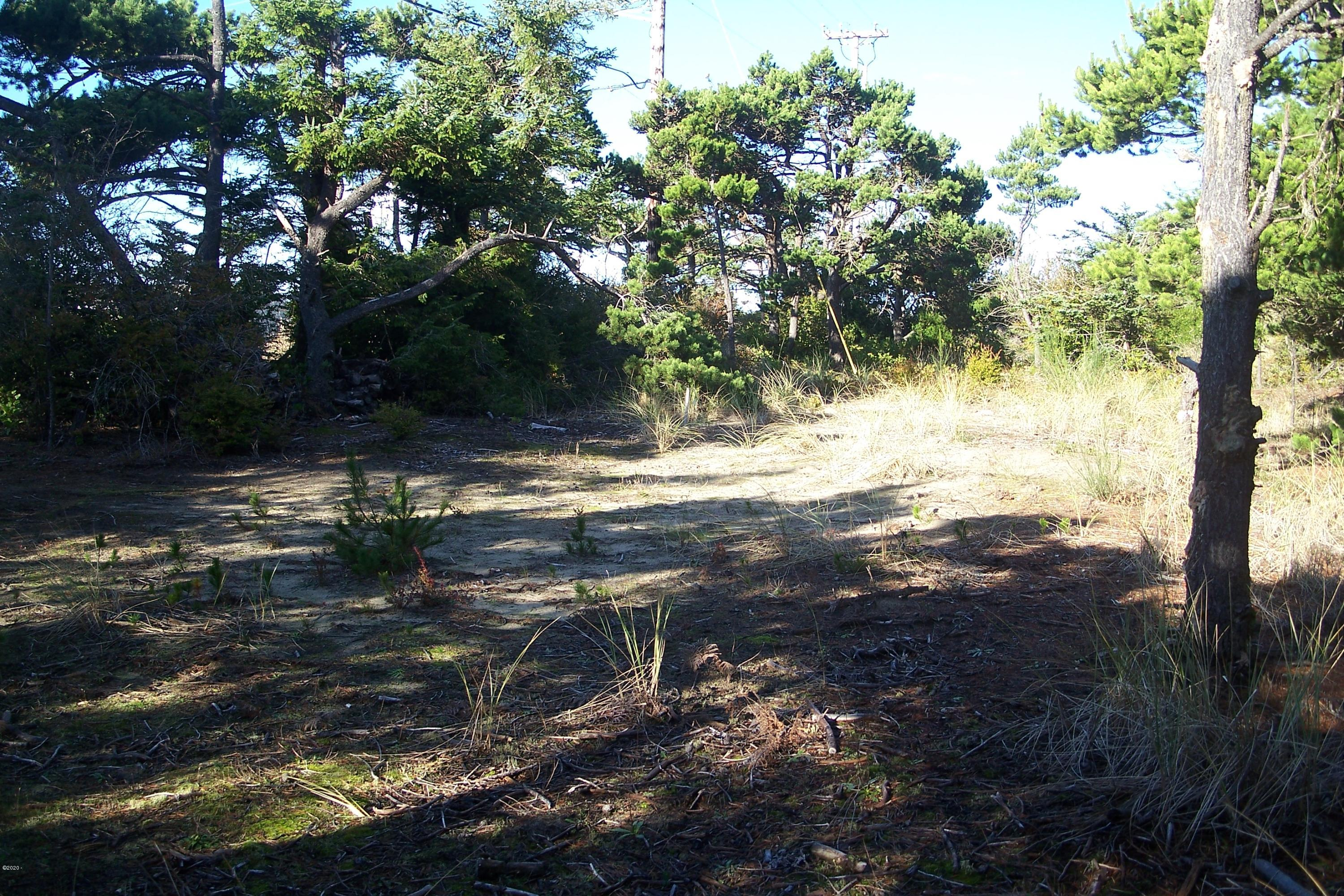 1401 NW Bayshore Dr, Waldport, OR 97394 - Buildable area
