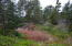 LCM # 13s11w07 Sw Hidden Lake Drive, Waldport, OR 97394 - Lot Pic 4