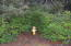 LCM # 13s11w07 Sw Hidden Lake Drive, Waldport, OR 97394 - Fire Hydrant 100 ft from Property