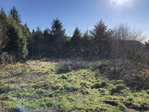 TL 2301 Horizon Hill, Yachats, OR 97498 - Flat City lot