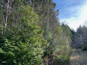 T/L 3300 Newton Ct, Waldport, OR 97394 - wooded entry to subdivision