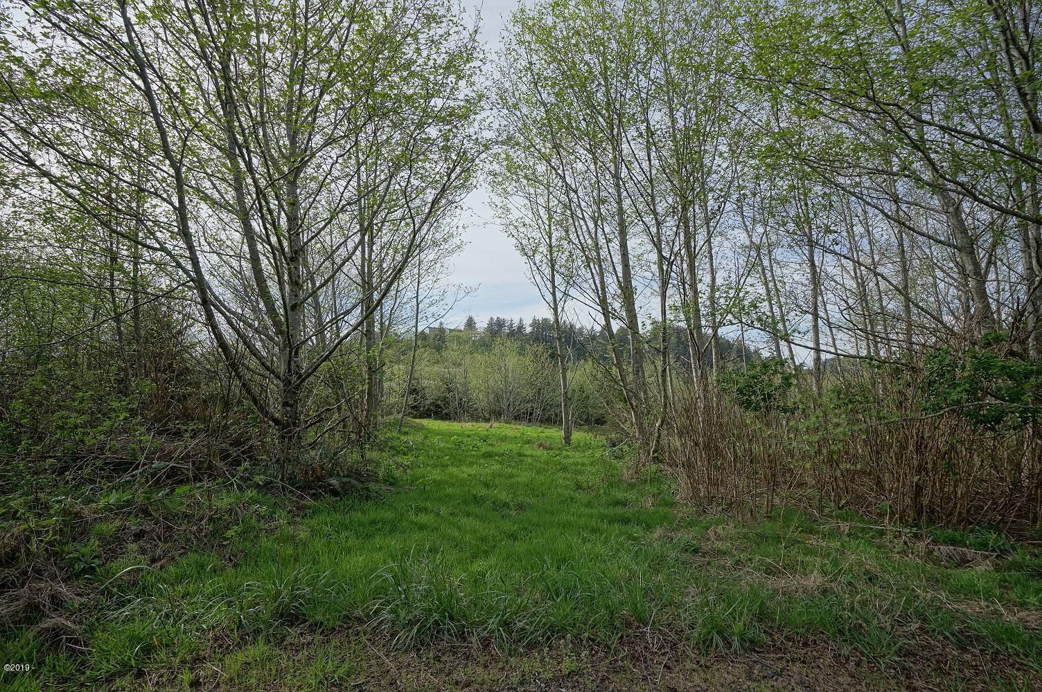 LOT 600 Aeolian Way, Neskowin, OR 97149 - DSC02029 lower res