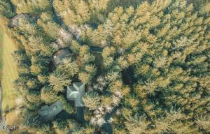 560 Fairway Dr, Gleneden Beach, OR 97388 - Aerial