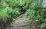 5735 S Immonen Rd, Lincoln City, OR 97367 - Steps to Cabins