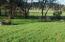 432 A St, Siletz, OR 97380 - Backyard View 1