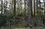 TAX LOT 44 SW Surfland St, South Beach, OR 97366 - SW 77th Ct