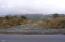 1800 Elk City Rd., Toledo, OR 97391 - Driveway