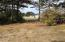 1401 NW Bayshore Dr, Waldport, OR 97394 - Proposed driveway