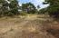 1401 NW Bayshore Dr, Waldport, OR 97394 - Vacant lot