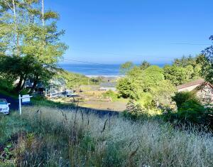 TL 2500 Overlook Dr, Yachats, OR 97498 - View standing on lot