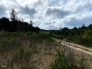 5425 S. Coast Hwy, Newport, OR 97365 - 213 acres Industrial Zoned