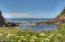 1235 SW Walking Wood, Depoe Bay, OR 97341 - Cove