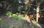 1725 NW Oceanview Dr, Newport, OR 97365 - Backyard slope