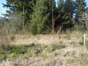 780 NE Jeffries Ct, Newport, OR 97365 - Front View of Lot