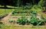 9466 Yachats River Rd, Yachats, OR 97498 - Fenced Garden/Great Sun