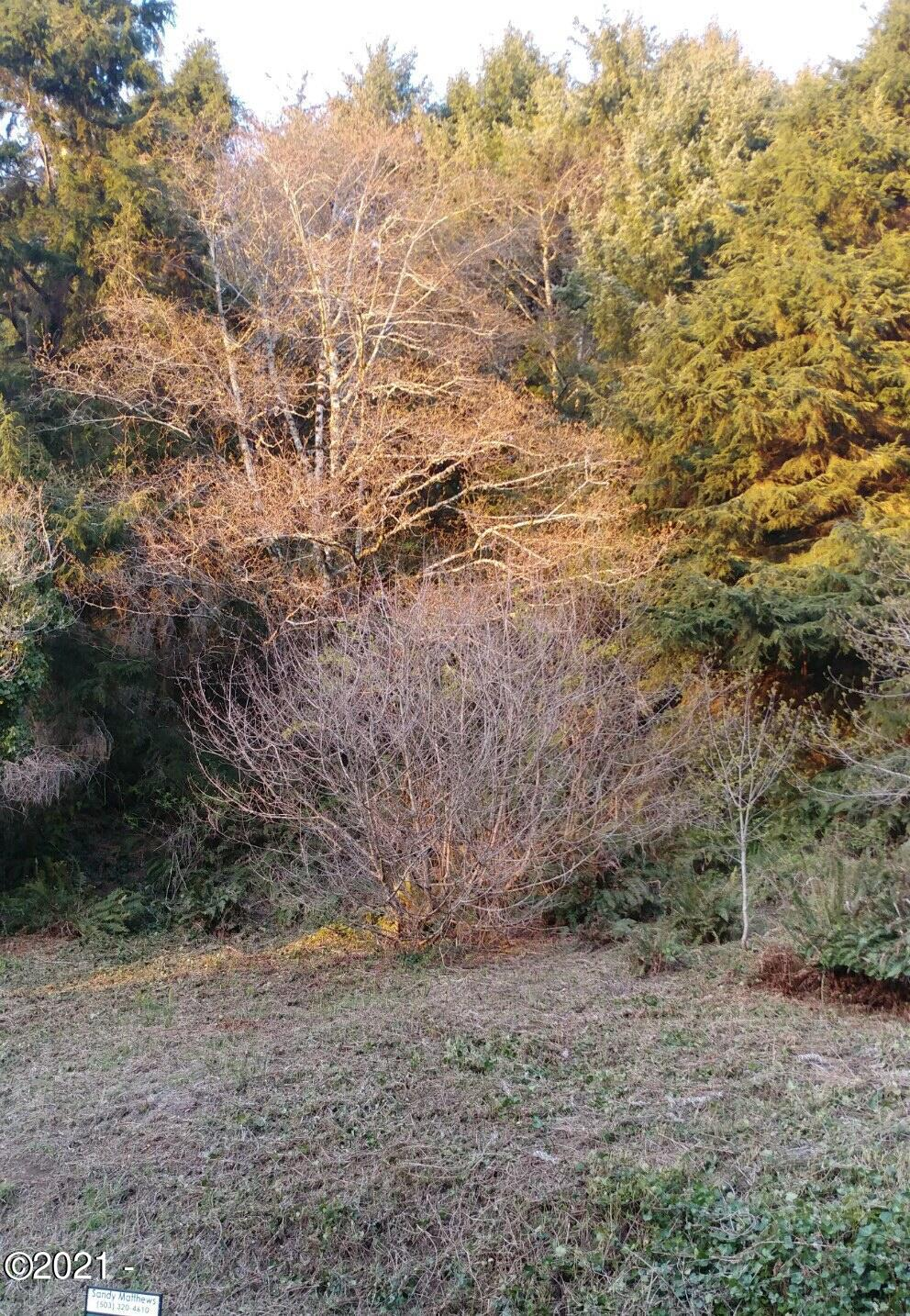 LOT 21 Sea Crest Dr, Otter Rock, OR 97369 - lot 21 new photo