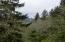 3035 Elderberry Ln, Otis, OR 97368 - Cascade Head View