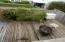 3800 NW Jetty Ave, Lincoln City, OR 97367 - 3800 Patio3