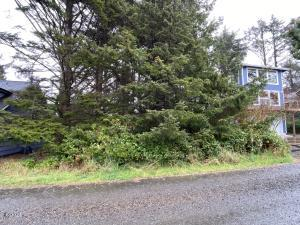 1400 BLK SW Dune Ave TL 4800, Lincoln City, OR 97367 - IMG_4011