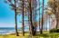 94288 US-101, Yachats, OR 97498 - Tree and Ocean View