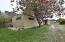 1705 SE 8th St, Lincoln City, OR 97367 - Beautiful cherry treeDSC_0004 (2)