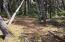 3801 NW Hidden Lake Dr, Waldport, OR 97394 - Easy to build