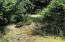 3801 NW Hidden Lake Dr, Waldport, OR 97394 - Natural vegetation on lot