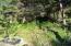 5401&5600 SW South Point St, Depoe Bay, OR 97341 - DSC01960