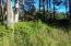 5401&5600 SW South Point St, Depoe Bay, OR 97341 - DSC01963