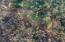 7295 NE Highland Rd, Otis, OR 97368 - Aerial