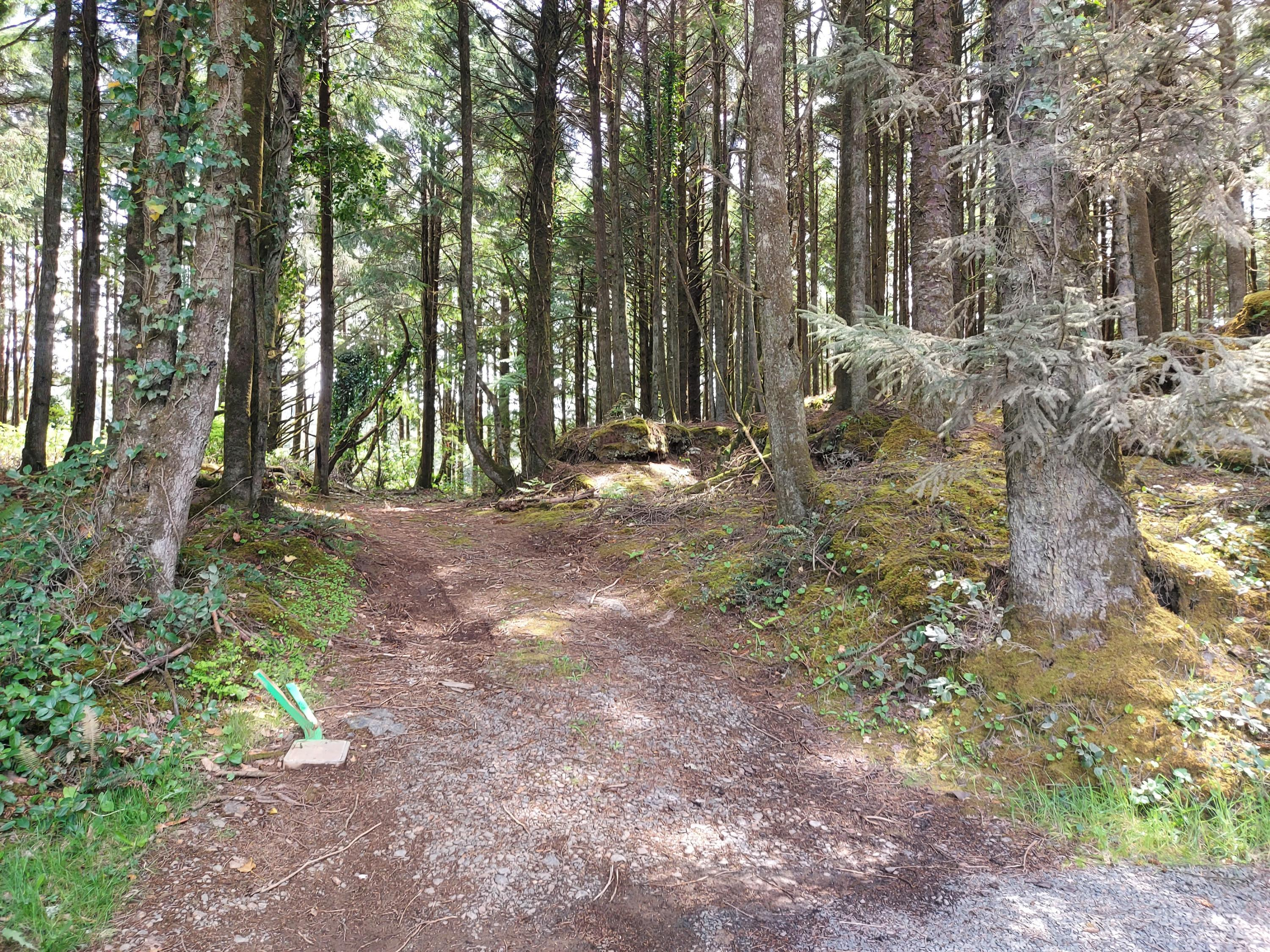 TL 2000 SW Bard Rd, Lincoln City, OR 97367 - Entry Driveway
