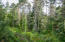 12653 SE Elderberry Dr, South Beach, OR 97366 - Beautiful Forest View
