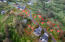 LOT 40 Proposal Point Dr, Neskowin, OR 97149 - SahhaliSouthLots-03