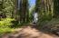 710 NW Terrace Dr, Toledo, OR 97391 - 710 NW Terracce Drive