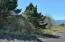 LOT 6000 Horizon Hill Rd, Yachats, OR 97498 - P0000001