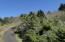 LOT 6000 Horizon Hill Rd, Yachats, OR 97498 - P0000007