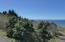LOT 6000 Horizon Hill Rd, Yachats, OR 97498 - P0000002