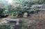 1622 Praslin Street, Eugene, OR 97402 - Shade Garden